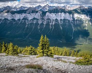 Découverte du scrambling dans le Parc National de Banff : le Mont Rundle