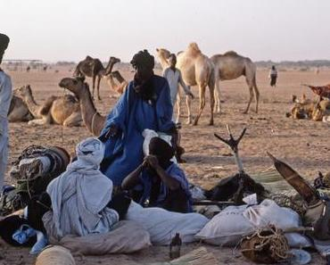 De Tamanrasset à Agadez