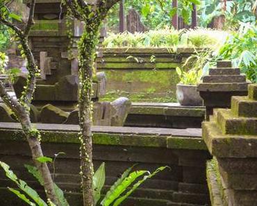 Ubud stories #5 : réveil sur l'Île des dieux