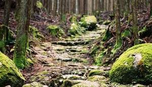 Quatre jours randonnée pèlerinage Kumano Kodo