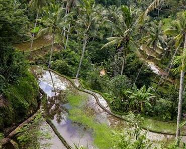 Ubud stories #11 : Gunung Kawi