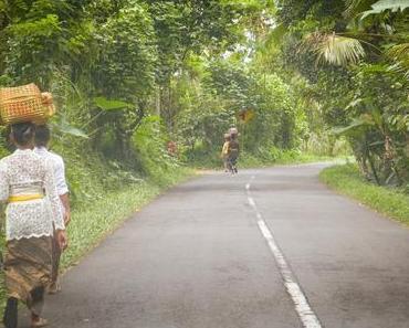 Ubud stories #13 : Les subak de Jatiluwih