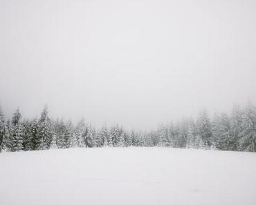 Viðkvæmni, La tendresse de l'hiver