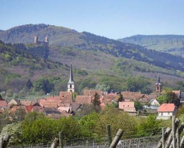 Mittelbergheim : un des plus beaux villages alsaciens
